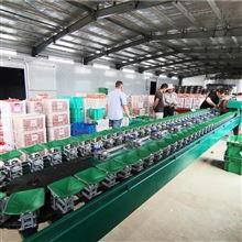 XGJ-SZ广西柠檬分级设备多功能电商水果选果机