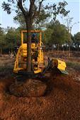 三普挖树机价格品牌图片链条式移树机厂家