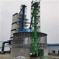 玉米筛选提升机 米厂烘干塔配套提升上料机