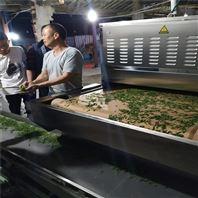 西安圣达微波茶叶杀青机 流水线作业产量大