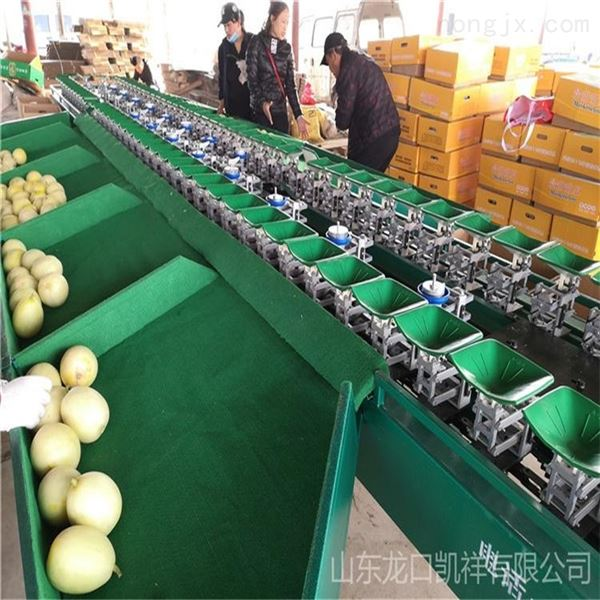 挑选水果大小的机器水果分选机分级机