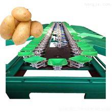 XGJ-SZZ高效土豆选果机 提高工作效率辽宁有卖的么