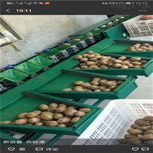 XGJ-Z猕猴桃分级机分果机陕西水果分选设备
