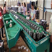 XGJ-SZ临潼石榴选果设备 水果分选机厂家供应