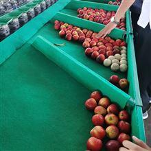 XGJ-SZ云南石榴重量分级机水果选果机多功能分拣机
