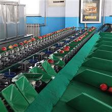XGJ-SZ油桃分选设备新疆水果选果机分选机
