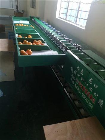 象山红美人分大小的机器  柑橘分拣机