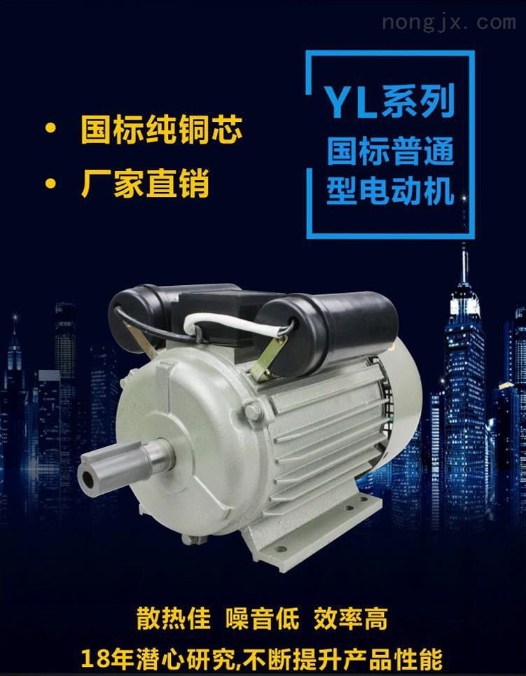 YL系列国标纯铜芯单相电动机
