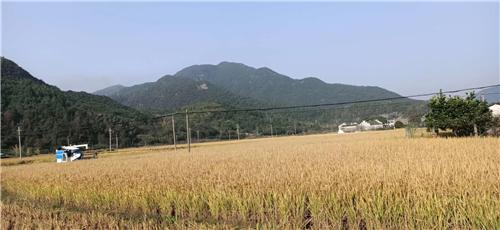 黑龙江省关于加快推进农机远程运维终端安装补助工作的通知