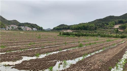 黑龙江省计划用三年时间基本实现农机作业标准化