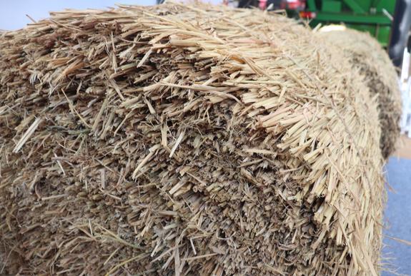 吉林省农业农村厅关于印发水稻秸秆还田技术规程的通知