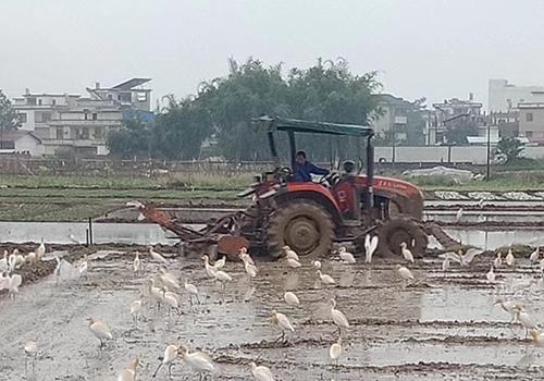 云南开展农机事故应急处置演练
