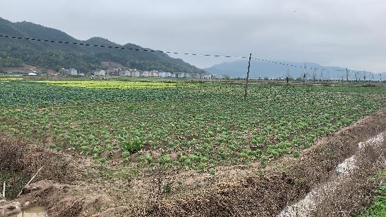 保障粮食安全,多措并举提高我国耕地质量